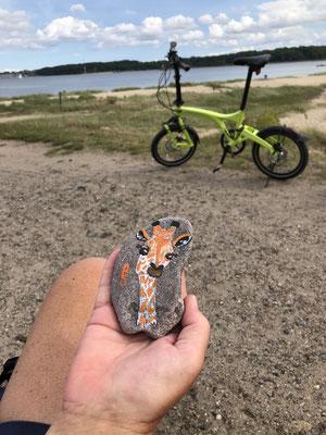 Dieser bemalte Stein lag einfach so auf der Bank