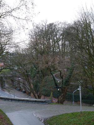 Energielijn Sinte-Ontcommer/ Charlotte van Sint-Gertrudiskapel naar Het Valkhof