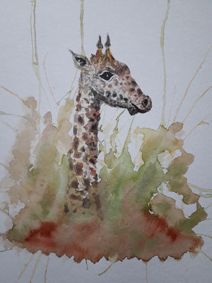 Lovely Giraffe - leider schon weg...