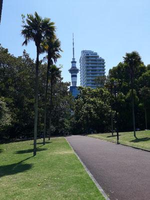 Sky Tower Auckland petitedecouverte.fr