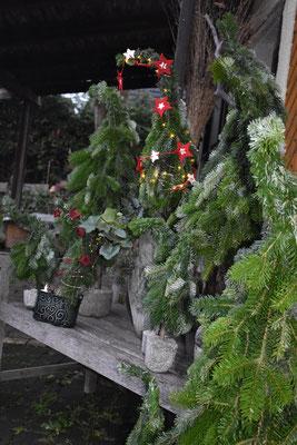 Wichtelbäume binden, Weihnachtsdeko, Advent, Kreativ