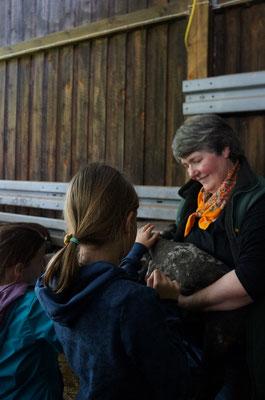 Die etwa sieben Wochen alten Lämmer dürfen auch gestreichelt werden. Schäferin Christel Keller klärt geduldig alle Fragen rund um die Lämmer.  (©odenwaldlust)