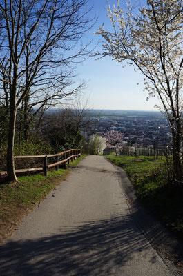 Auch über den Fußweg Richtung Bensheim Kalkgasse kann man auf dem direkten Weg zum Kirchberghäuschen laufen. (©odenwaldlust)