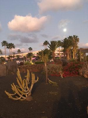 Abendstimmung in Playa Blanca