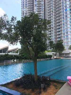 Apartmentkomplex am Hafen von Johor Bahru