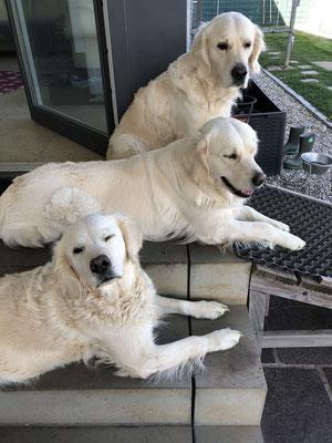 Dana, Vicky,Mila