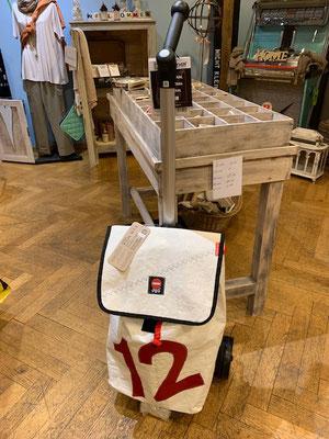 Einkaufs-Trolley mit Teleskopgriff