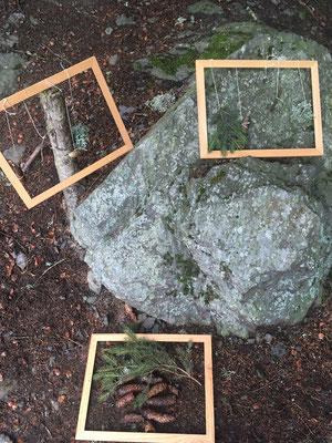 Wir gestalten ein dreidimensionales Waldbild.