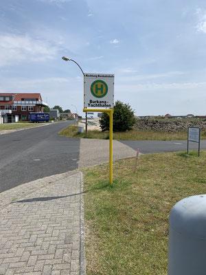 Mittags nehme ich den Bus vom Hafen in das 7 km entfernte Borkum (auf Borkum)