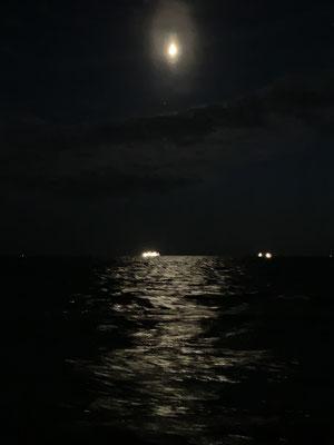 ... Bei Mondschein brettere ich mit 8 Knoten über das Borkumer Riff! ... als die Tiefe dann auf 3 Meter abfällt wird mir doch etwas mulmig ... aber alles gut gegangen ... waren ja auch noch 90 cm Platz unterm Kiel ... hier war zum Glück kein Container!