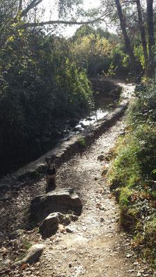 Weiter flussabwärts wir der Rio Majaceite von einer Mauer in künstliche Bahnen gelenkt.