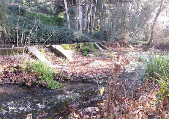 Eine Art Staumauer leitet einen Teil des Wassers ab zu einer alten Mühle.