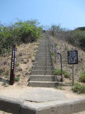 こんな階段登ります。 ひえ~ 先が見えない