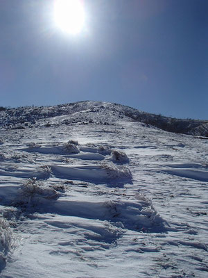 向こうに見えるのが霊仙山最高地点
