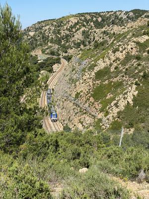 Passage du TER dans un paysage bien méditerranéen qui va devenir jaune