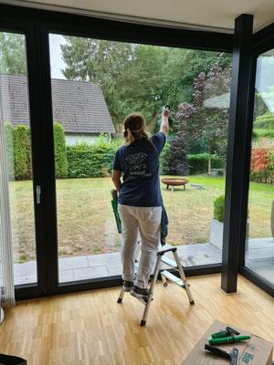 Kristall-Reinigungsservice Fensterreinigung