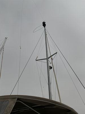 """Da ich meine Höhenangst wohl nicht mehr los werde, habe ich die Profis bezahlt ein Leine (die """"Dirk""""), die sich auf der Fahrt von Lagos nach Lanzarote verabschiedet hat, wieder einzufädeln! 20 Meter sind schon hoch ;o/"""