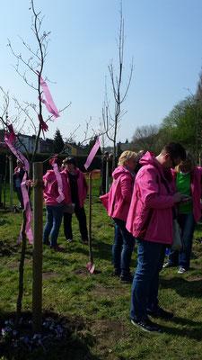 Jubiläumswald 10.04.2016 - Wir besuchen unseren Baum.