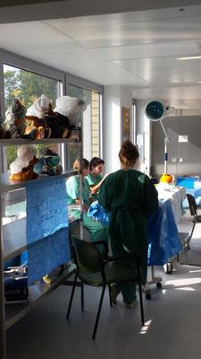 Wir stellen uns vor....Tag der offenen Tür im St. Marien Hospital Lünen - Okt. 2015