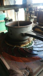 萎凋した茶葉を揉み上げます。