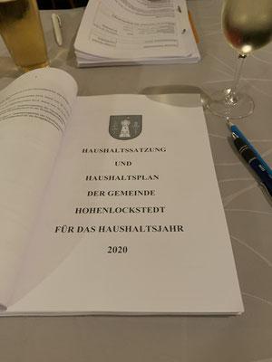 Entwurf des Haushaltsplans