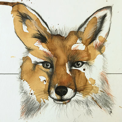 'fox I' coffee ink, mixed media on paper. 30x30cm