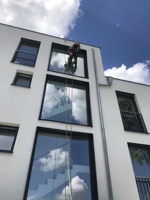 Glasfassaden Grundreinigung per Seilklettertechnik.