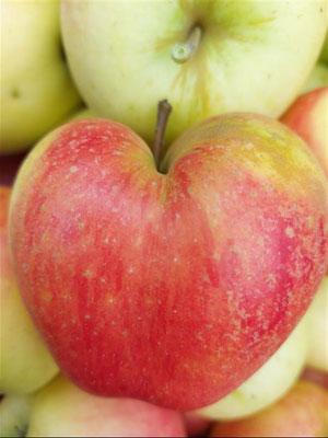 Pommes  locale en forme de cœur