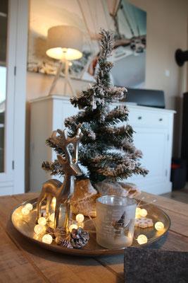 """Weihnachtliches """"Zuhause auf Zeit"""""""
