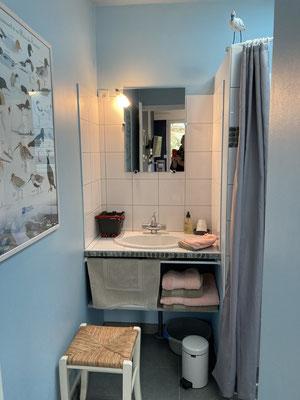 2 tapis de bain fournis Coton 600gr-sèche-cheveux et* linge de toilette en option sur demande