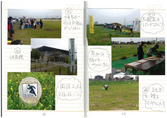 新運動公園