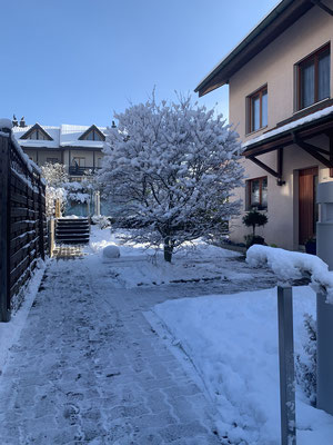 Winterzauber Schildmatte