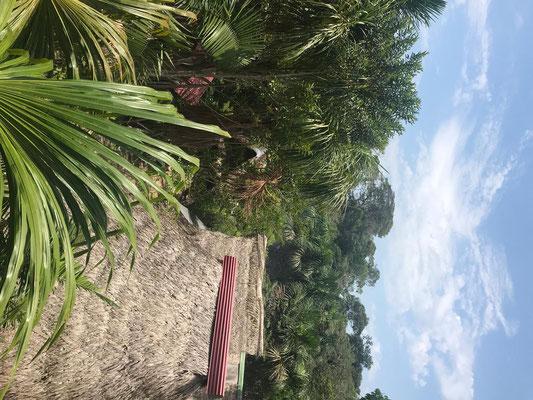 Über den Dächern vom Camp Charapamama