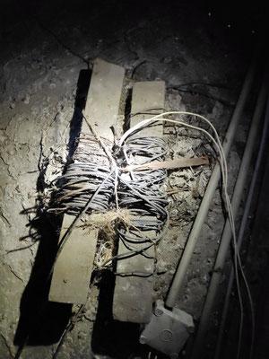 Voilà les cordes qui servent à descendre les luminaires en bas pour remplacer les lampes. Les projecteurs prévus seront basés sur le même principe : ils pourront tous descendre.