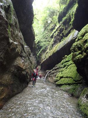 Canyon du Bitet en vallée d'Ossau (Pyrénées-Atlantiques)