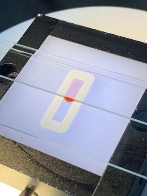 スライドガラスチャンバーイメージ2