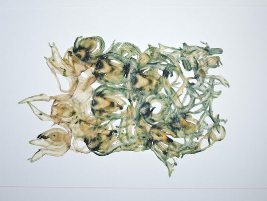 PAPIER-art ART-papier, Pseudopapier, Gemüsebild, Fenchel, Mattsee, Austria