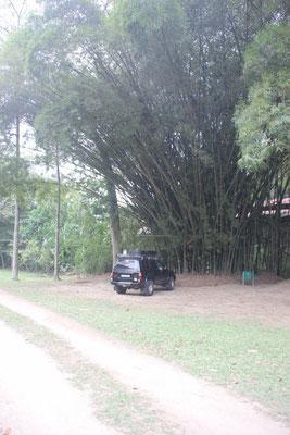 Unser Schlafplatz auf dem Camping El Portal.