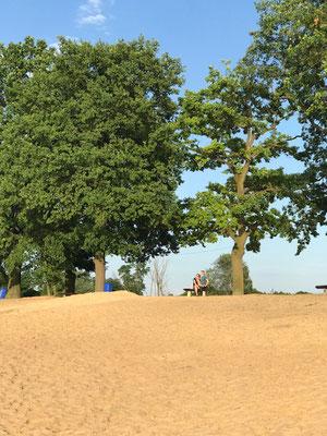 Alte Eichen, Sandstrand- die besten Badeseen des Oderlandes