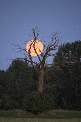 Mondaufgang am Übernachtungsplatz