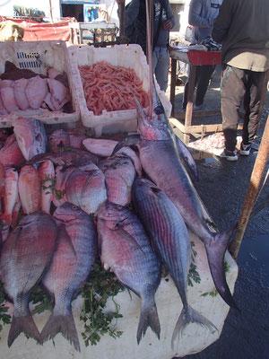 Fischerhafen Essaouira