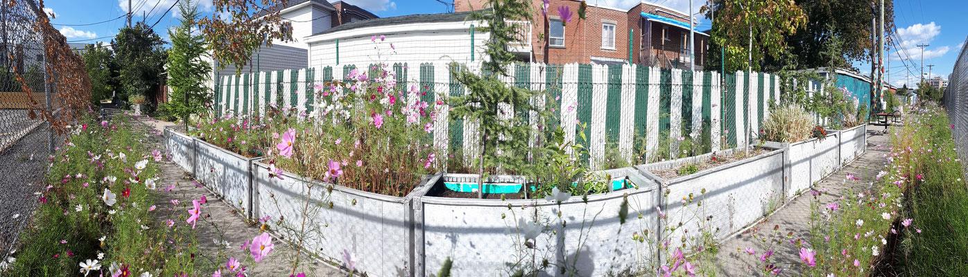 Mobilier urbaine pour ruelle verte - grand bacs à fleurs extérieurs