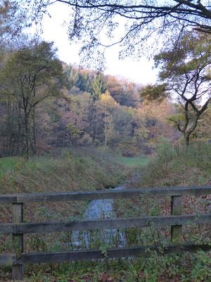 Wunderschöne Natur lädt zum Wandern und Spazierengehen ein.