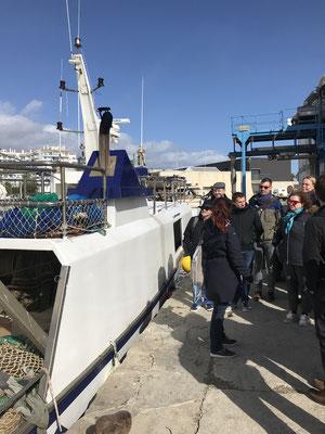 Voyage d'études Sotogrande / Visite Estepona 01.02.2019 / (c) www.effep.eu
