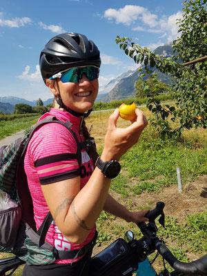 Etappe 3: Andermatt -Sierre - Aprikosen klauen