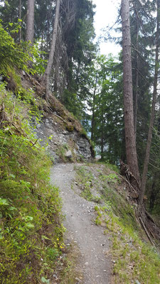 Tolle Singletrails