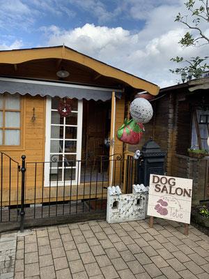 dog salon tete ドッグサロンはご予約制です