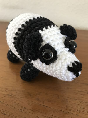 Panda, 20 CHF