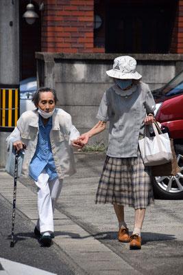 2021年8月1日(日)朝、ひまわりの育っている様子をみに行きましたら、30メートル先から手を取り合い、礼拝にご出席の親子、光子さん93歳と娘さんの安佐子さんのお姿、その1