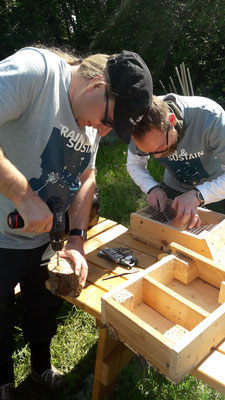 Mit Akkubohrern wurden Löcher in die Holzscheiben und -stücke gebohrt und in die Holzrahmen eingepasst (Foto: A. Lampe).